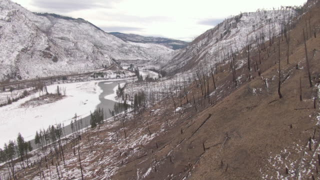 DRONE: Dreary view of a burnt down forest and the wintry Canadian wilderness. video