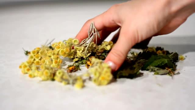 vídeos y material grabado en eventos de stock de secos mezcladas a mano plantas curativas - medicina holística