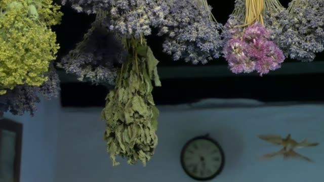torkade örter hängde i taket. - basilika ört bildbanksvideor och videomaterial från bakom kulisserna