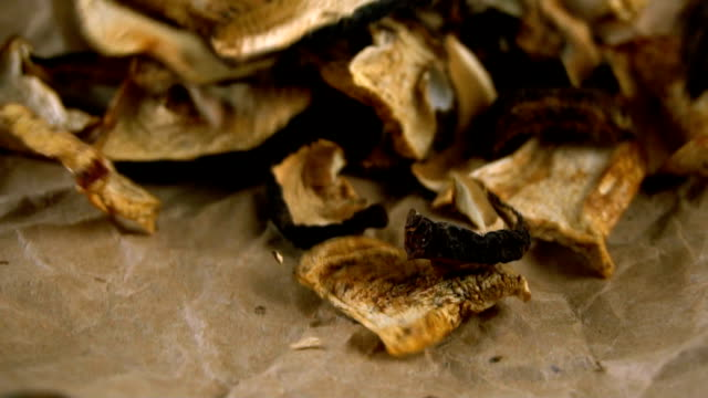 Dried mushrooms falling on parchment video