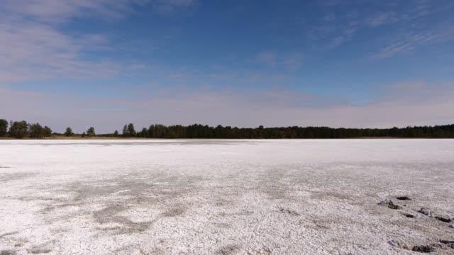 vidéos et rushes de lac salé séché entouré de forêt de pins. - lac salé