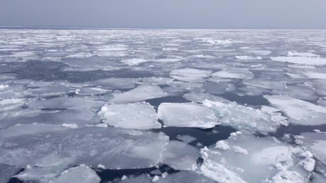 drift ice and the sea of okhotsk,hokkaido.japan. - ghiaccio galleggiante video stock e b–roll
