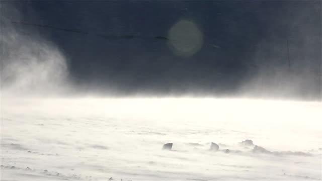 drivande snö och snöstorm i norr. - snöstorm bildbanksvideor och videomaterial från bakom kulisserna
