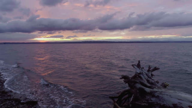 Driftwood Root Ball On Beach Sunset Glory Light Cloudscape video
