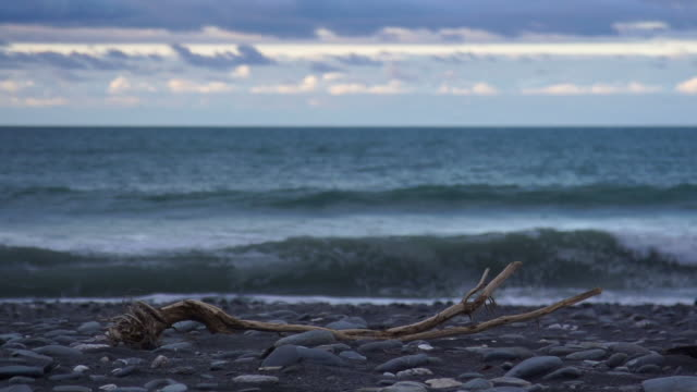 SLOW MOTION: Driftwood video