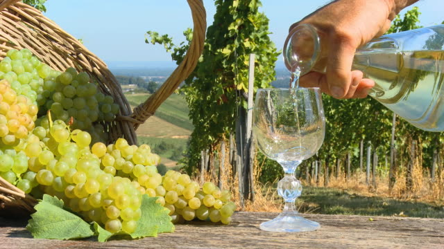 HD DOLLY: Drinking White Wine In Vineyard video