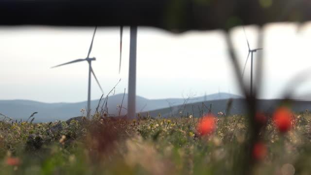 ein tropfbewässerungssystem dribbelt im hintergrund der windkraftanlage. das konzept der erneuerbaren energien, der sauberen energie und der effizienz. strom oder strom aus der natur, wind. - wassersparen stock-videos und b-roll-filmmaterial
