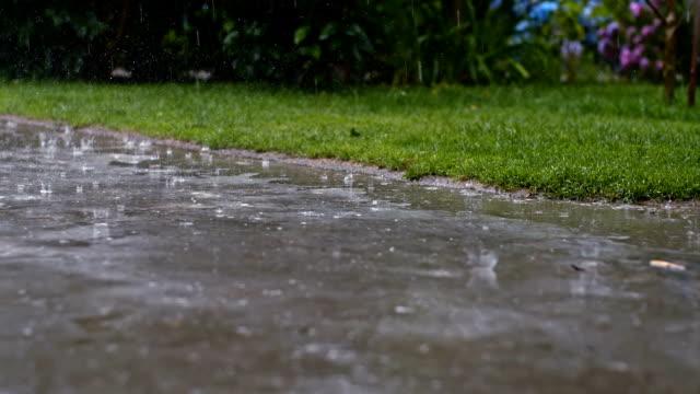 vídeos de stock e filmes b-roll de slo mo entrada para automóvel na chuva torrencial - driveway, no people