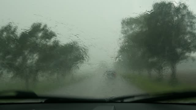 driving a car, downpour, heavy rain, driver's and passenger's perspective
