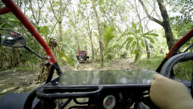Driving ATV in Forest video