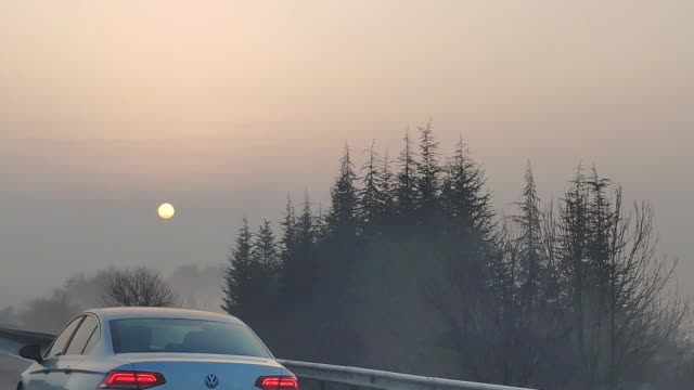 Driving Car Point of View on a Winter Morning Foggy Road With Sun