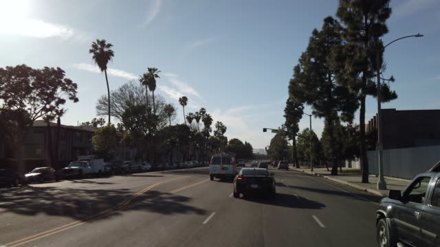 Driving down Martin Luther King Blvd 1. LOS ANGELES, CALIFORNIA - APRIL 14, 2019: Driving in South Los Angeles Traffic. Driving down Martin Luther King Blvd. The transformation from Santa Barbara Ave. to Martin Luther King Blvd. began with businessman Celes King III. Mr. King III strongly believed L.A. should and must have a street named after the civil rights activist. civil rights stock videos & royalty-free footage