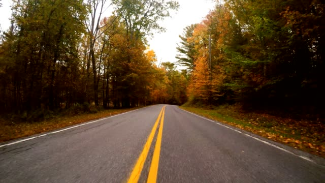 driving for the foliage in new england video