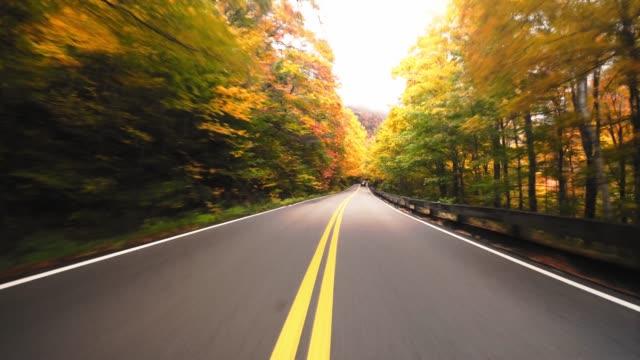 kör i new england för höstsäsongen - bilperspektiv bildbanksvideor och videomaterial från bakom kulisserna