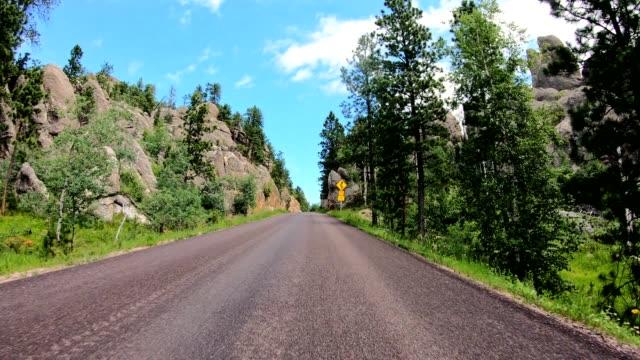 driving in the black hills in south dakota