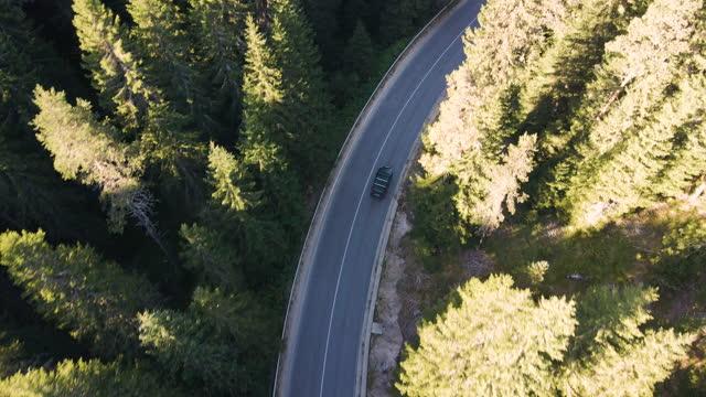 vídeos de stock, filmes e b-roll de dirigindo nas montanhas em uma estrada vazia. vista aérea de uma rodovia cercada por grandes pinheiros, e apenas um carro passando durante a pandemia covid-19. vista superior, dirigindo na natureza. - um único objeto