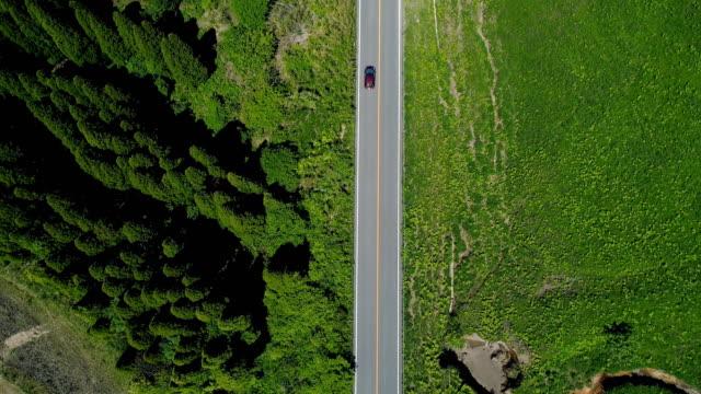 körning i naturen - direkt ovanför bildbanksvideor och videomaterial från bakom kulisserna
