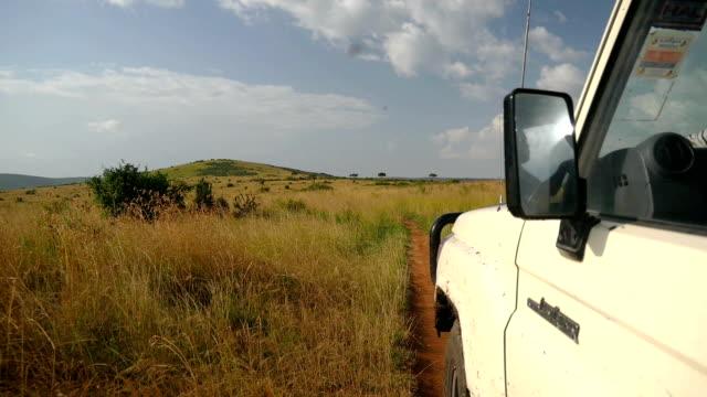 vídeos de stock e filmes b-roll de condução em estrada em terra batida no safari do quénia - quénia