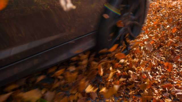 Driving on a leaf covered road in autumn Car driving on a leaf covered road in autumn, moving towards the camera. Shot in slow motion tires stock videos & royalty-free footage