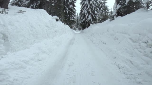 vídeos de stock e filmes b-roll de driving on a snowy forest road - passagem de ano