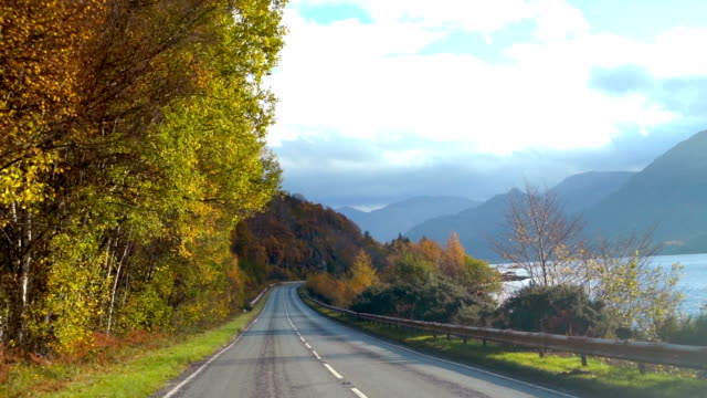slo mo driving on autumn road - highlands scozzesi video stock e b–roll