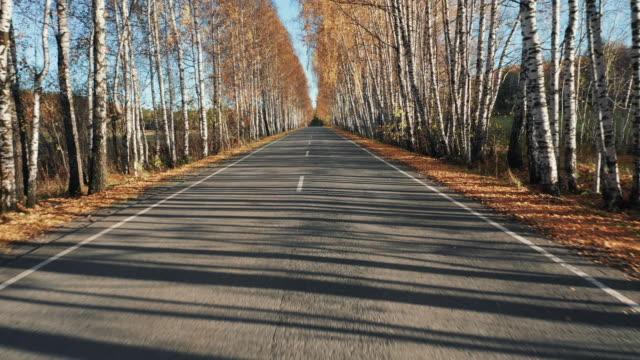 vídeos de stock e filmes b-roll de driving on countryside road, moving forward - reto descrição física