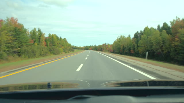 DRIVER'S POV Driving on empty highway through gorgeous colorful forest in autumn DRIVER'S POV: Driving on empty highway trough beautiful autumn forest with red, yellow and green trees. FPV autonomous car self steering on empty countryside road past colorful forest trees in fall country road stock videos & royalty-free footage