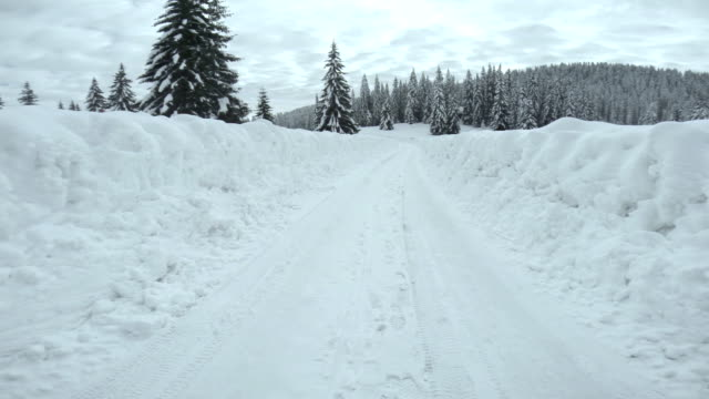 Driving On Snowy Forest Road video