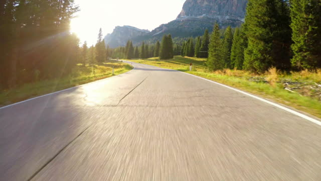 Driving on winding road through forest at sunset