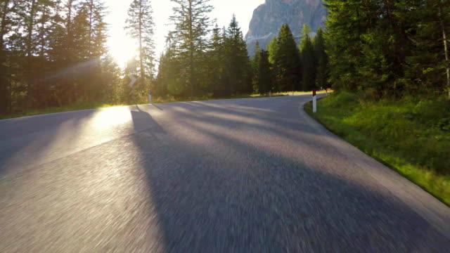 driving on winding road through forest with sun shinning through trees - strada tortuosa video stock e b–roll