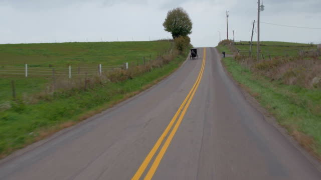 close up: driving past amish horse-drawn buggy traveling along the country road - cocchio video stock e b–roll