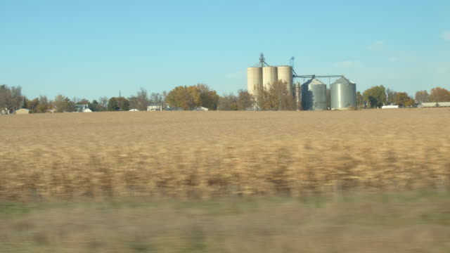 Driving past corn fields on agricultural farm with steel and concrete silos