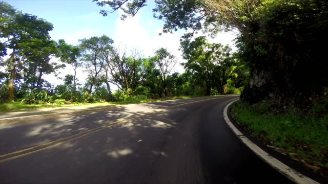 driving the roads in the islands of hawaii - strada tortuosa video stock e b–roll