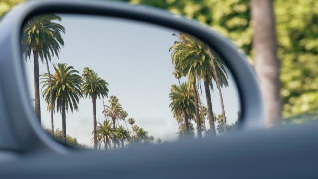 fahrt durch einen boulevard mit palmen in kalifornien - palme stock-videos und b-roll-filmmaterial