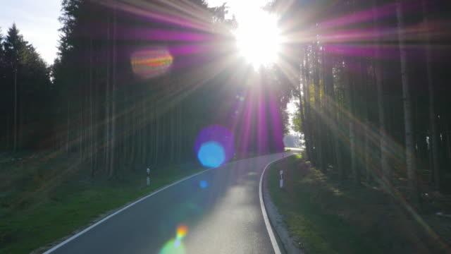 vídeos de stock e filmes b-roll de driving through autumn forest on sunny day - berma da estrada