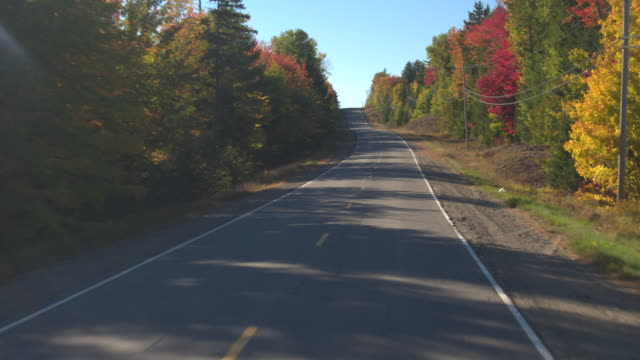 POV LENS FLARE: Driving through beautiful colorful forest in sunny autumn season video