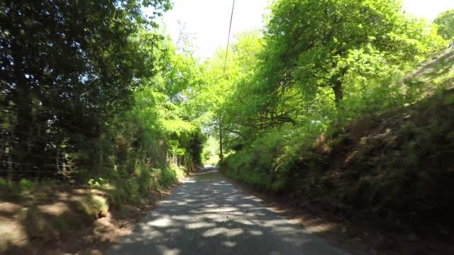 エクスムーア国立公園の森の下り坂にあるダンケリービーコンの丘を通るpov - 叙情的な内容点の映像素材/bロール