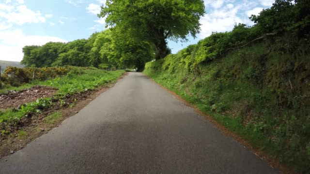 イギリスのエクスムーア国立公園のダンケリービーコン丘を通るpov - 叙情的な内容点の映像素材/bロール
