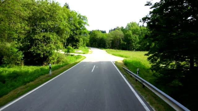 vídeos de stock e filmes b-roll de perspetiva pessoal tl condução através da floresta verde - berma da estrada