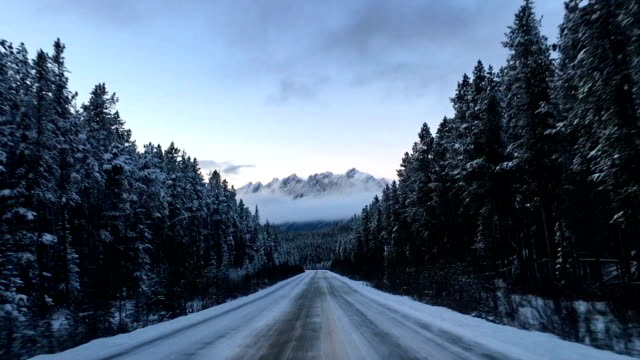 vidéos et rushes de conduire à travers le parc national de jasper - canada