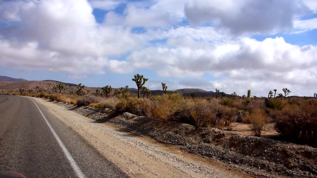 Driving through Joshua Tree National Park video