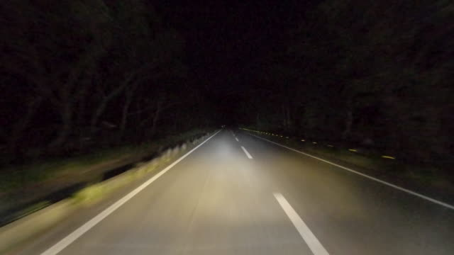 Driving Through midnight Forest Road