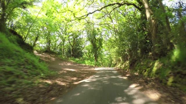 エクスムーア国立公園イングランドの森のポロック通りを運転するpov - 叙情的な内容点の映像素材/bロール