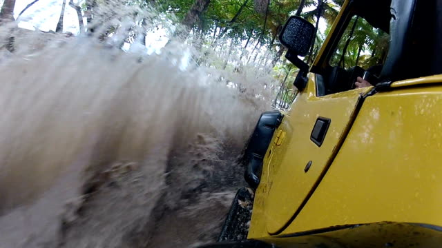 Driving through puddles in the rainforest video