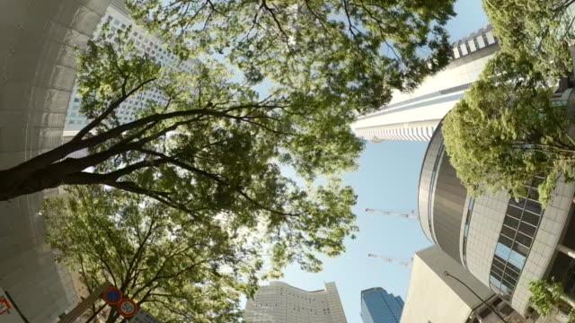 vídeos de stock e filmes b-roll de driving through skyscrapers in the city. looking up view of skyscrapers and green trees. - evolução