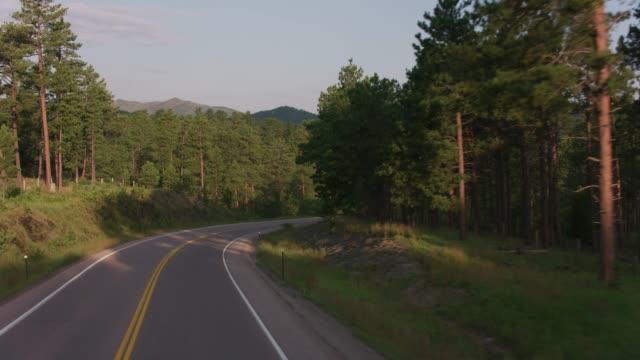 Driving through the Black Hills, South Dakota video