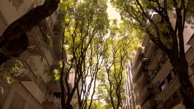 köra genom staden, vindrutan pov-bilar, byggnader, trafik. sunset time, titta igenom-slow motion - realtid bildbanksvideor och videomaterial från bakom kulisserna
