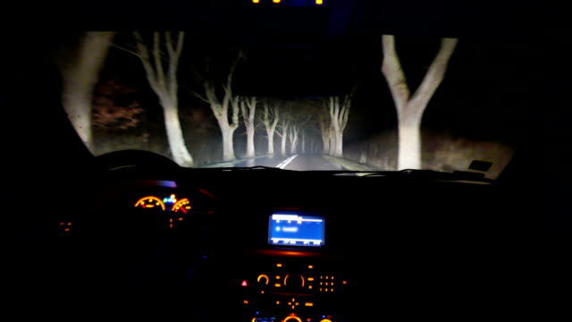 Driving through the forest at night video