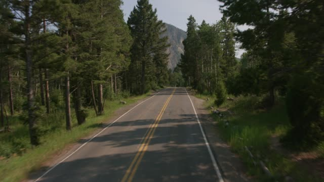 Driving through Yellowstone National Park. video