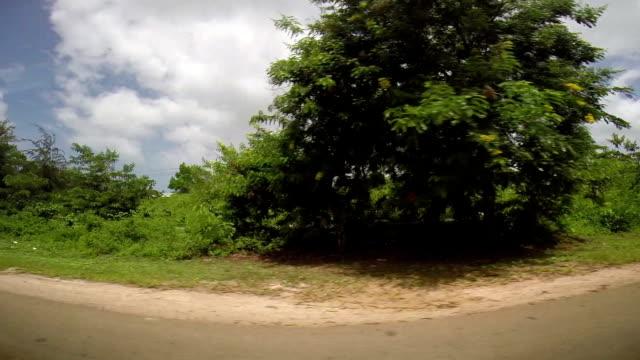 вождение через занзибар's island - линия экватора стоковые видео и кадры b-roll